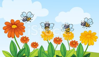 Plant,Leaf,Bee,Insect,Food,...