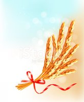Food,template,Ribbon,Bow,Wh...