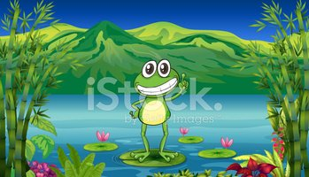 Frog,Water,Mountain,Water L...