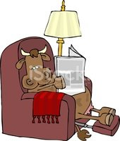 Cow,Reading,Newspaper,Bull ...