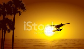 Palm Tree,Sunset,Vector,Bea...