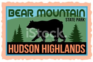 Bear,Mountain,Woodland,upst...