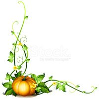Pumpkin,Vine,Leaf,Stem,Vege...