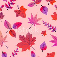 Autumn,Plant,Branch,Leaf,S...