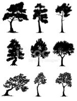 Hand drawn tree silhouettes