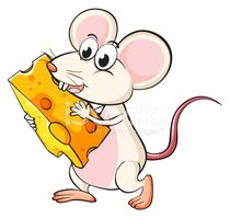 Rat,Backgrounds,Fun,Rodent,...