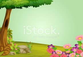 Forest,Pink Color,Owl,Tree ...