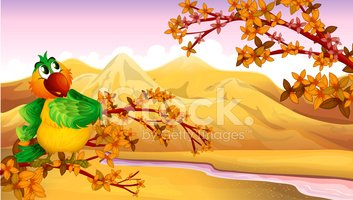 Yellow,Red,Nature,Image,Mul...