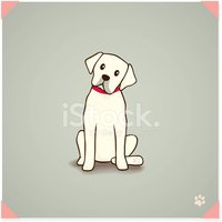 Yellow Labrador Retriever,...