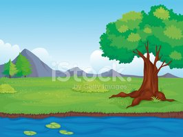 Water,Meadow,Backgrounds,O...