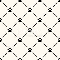 Pattern,Paw,Animal,Footprin...