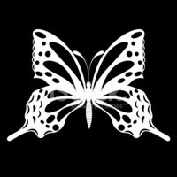Vector,Butterfly - Insect,A...