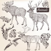 Animal,Elk,Retro Revival,Ol...