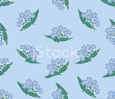 Forget-Me-Not,Blue,Flowing,...