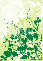 Plant,Backgrounds,Abstract,...