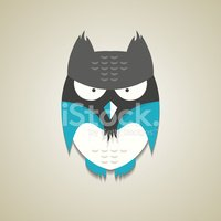 Owl,Animals Hunting,Night,F...