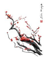 Cherry Blossom,Chinese Cult...