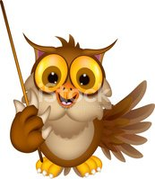 Cute owl cartoon holding stick