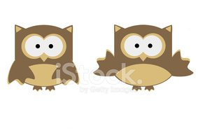 illustration cute owl cartoon isolated on white