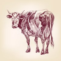 Cow,Symbol,Beef,Cattle,Stea...