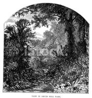 Engraved Image,Victorian St...
