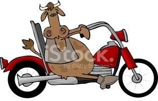 Motorcycle,Cow,Cycling,Bull...