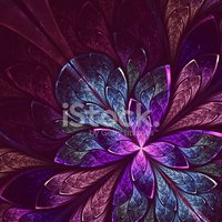 Flower,Kaleidoscope,Purple,...
