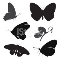 Silhouette,Flying,Butterfly...
