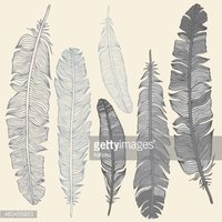 Feather,Letter,Old,Clip,Wri...