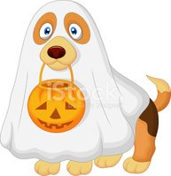 Trick Or Treat,Costume,Dog,...