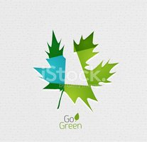 Leaf,Nature,Business,Enviro...