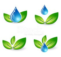 Leaf,Water,Computer Icon,Dr...