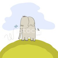 Mammal,Elephant,Animal,Trop...