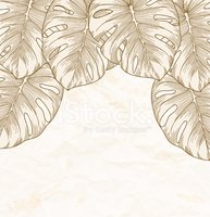vintage background. Old crumpled paper with leaves Monstera.