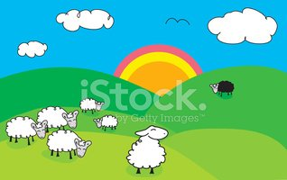 Sheep,Lamb,Farm,Hill,Family...