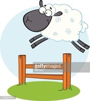 Happy Black Head Sheep Jumping Over Fence Stock Vector