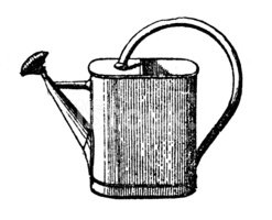 Watering Can,Engraved Image...
