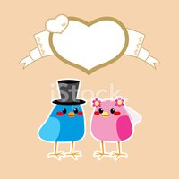 Wedding,Bird,Bridegroom,Bri...