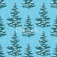 Pine Tree,Fir Tree,Snow,Out...