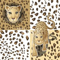 Pattern,Animal,Leopard,Anim...