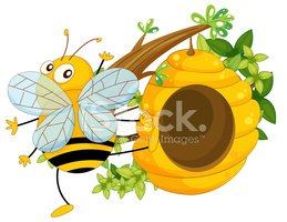 Bee,Image,Lifestyles,Branch...