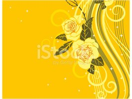 Rose - Flower,Yellow,Stripe...