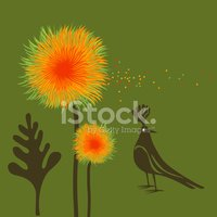 Bird,Flower,Pollen,Tropical...