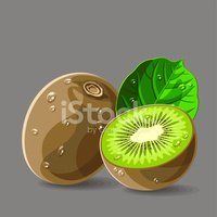 Vector fresh kiwis with water drops. Vector illustration.