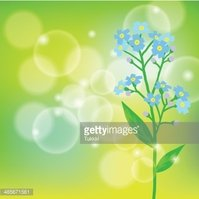 Decor,Botany,Defocused,Blue...