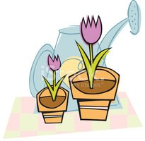 Tulip,Vector,Watering Can,P...