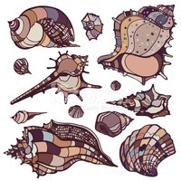 Snail,Aquarium,Backgrounds,...
