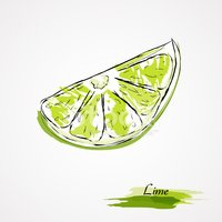 Lime,Citrus Fruit,Drawing -...