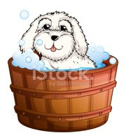 Bathtub,Dog,huggable,bestfr...