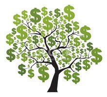 Money Tree,Currency,White B...